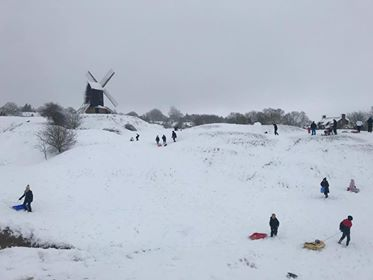Traditional windmill in the middle distance perched on a small snow-covered ridge. There are leafless trees to left and right of the windmill. The sky is grey. There are nine or ten figures on the slopes, children and adults, several with toboggans.